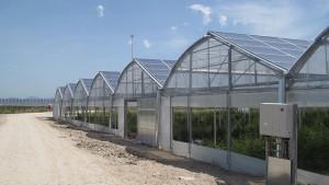 impianto-di-biometano-in-campania (4)